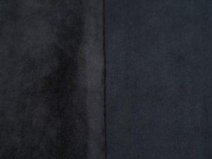 Microcastor gamuzado negro