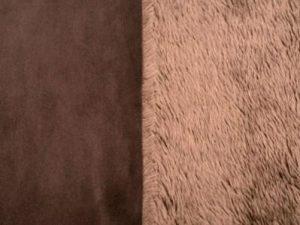 Microcastor gamuzado marron